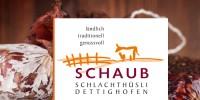 intro_schaub