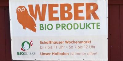 weber_intro